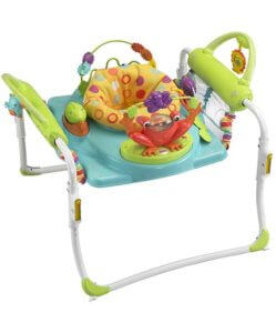 Fisher-Price Step-n-Play Best Jumperoo