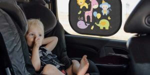 Best Car Sun Shade for Baby in UK